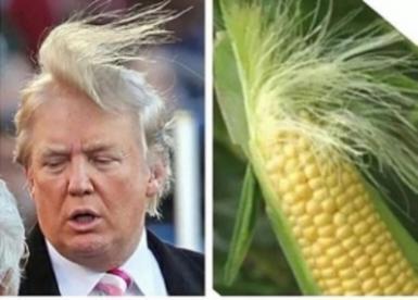 Une bonne petite blague sur Donald Trump