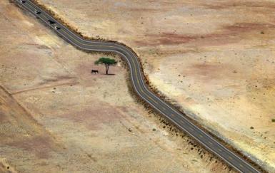 14 façons inspirantes de construire en respectant la nature